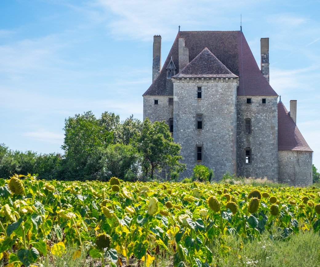 Chateau de Fourchaud