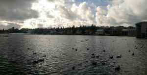 tjornin-the-beautiful-city-pond