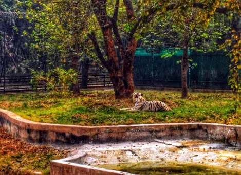 Top 10 Places to Visit with Kids in Delhi