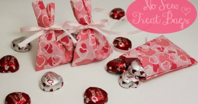 Valentines Day NoSew Treat Bags