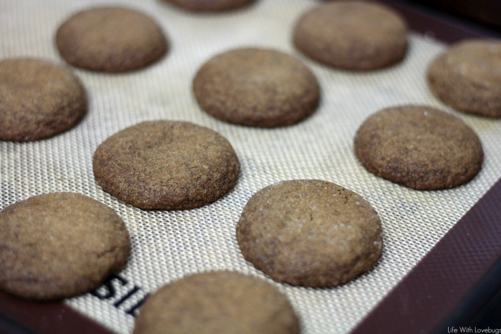 Soft Ginger and Molasses Cookies