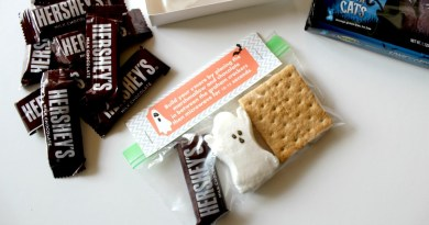 DIY Halloween S'Mores Kits with FREE Bag Topper Printable