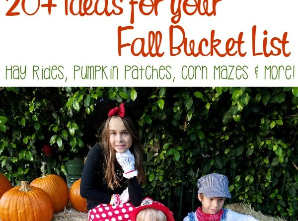 Corn Mazes, Pumpkin Patches, Cider and more! Here are 20+ ideas for your Fall Bucket List.