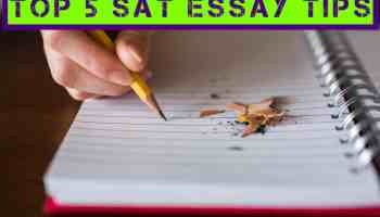 how to write a great body paragraph for the sat essay • love the  top 5 sat essay tips