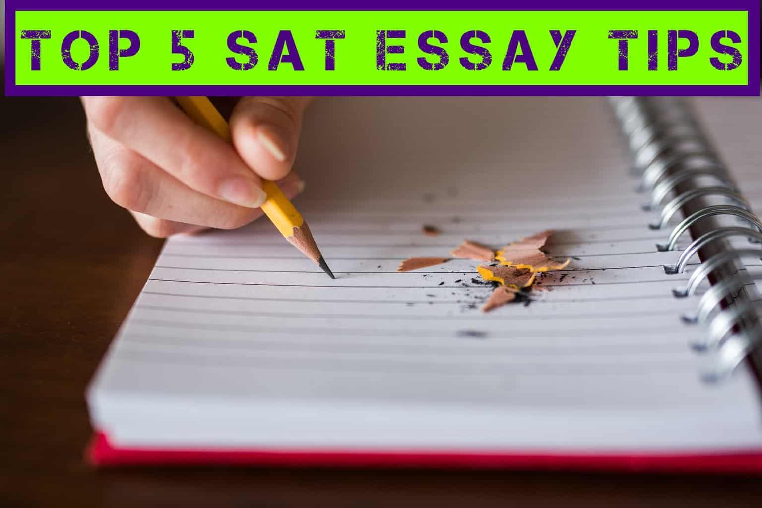 Sat practice essays