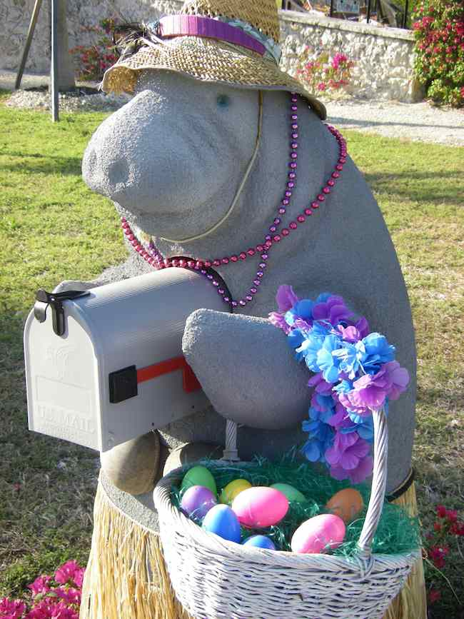 manatee mailbox in Florida Keys, 8 Great Key West tips
