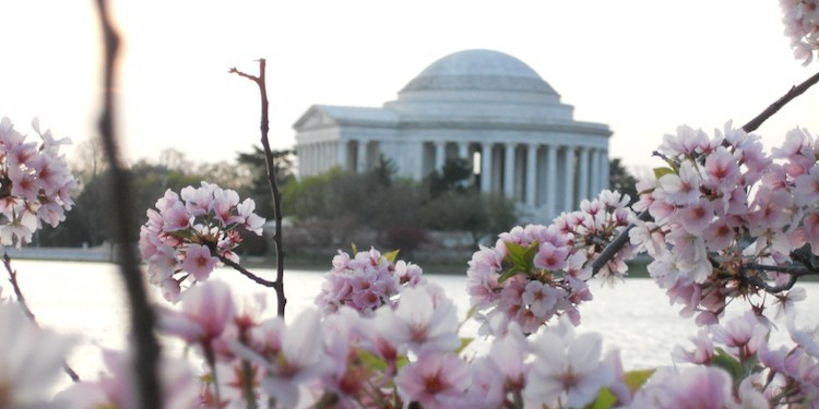 Fun Places to visit in Washington DC. Article and photo by Charles McCool for McCool Travel.