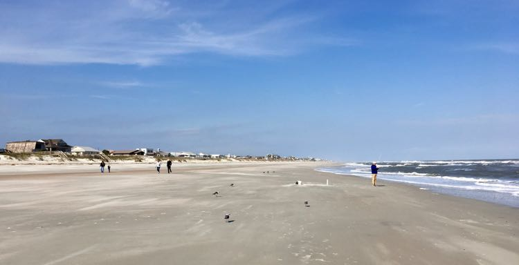 8 Great Things To Do in Amelia Island Florida