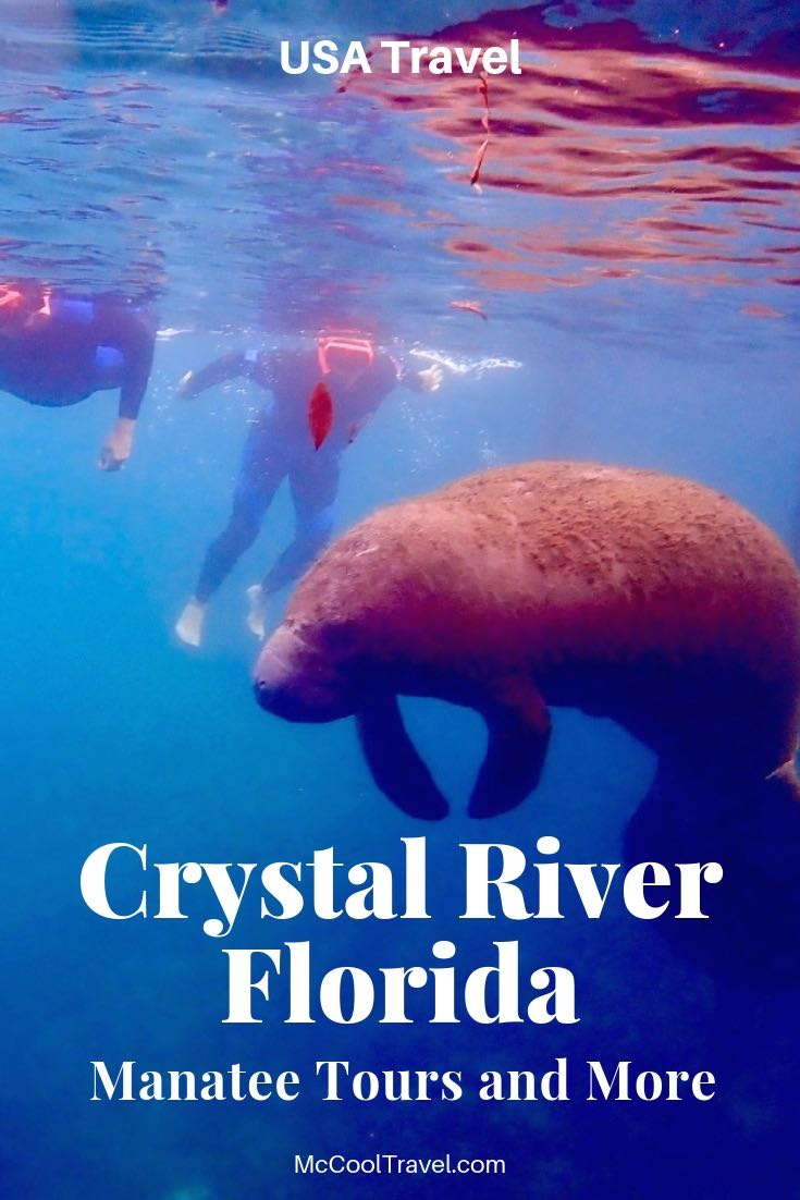 Fun things to do in Crystal River FL include manatee tours, park outings in Citrus County, quaint towns, and great places to eat and drink local.