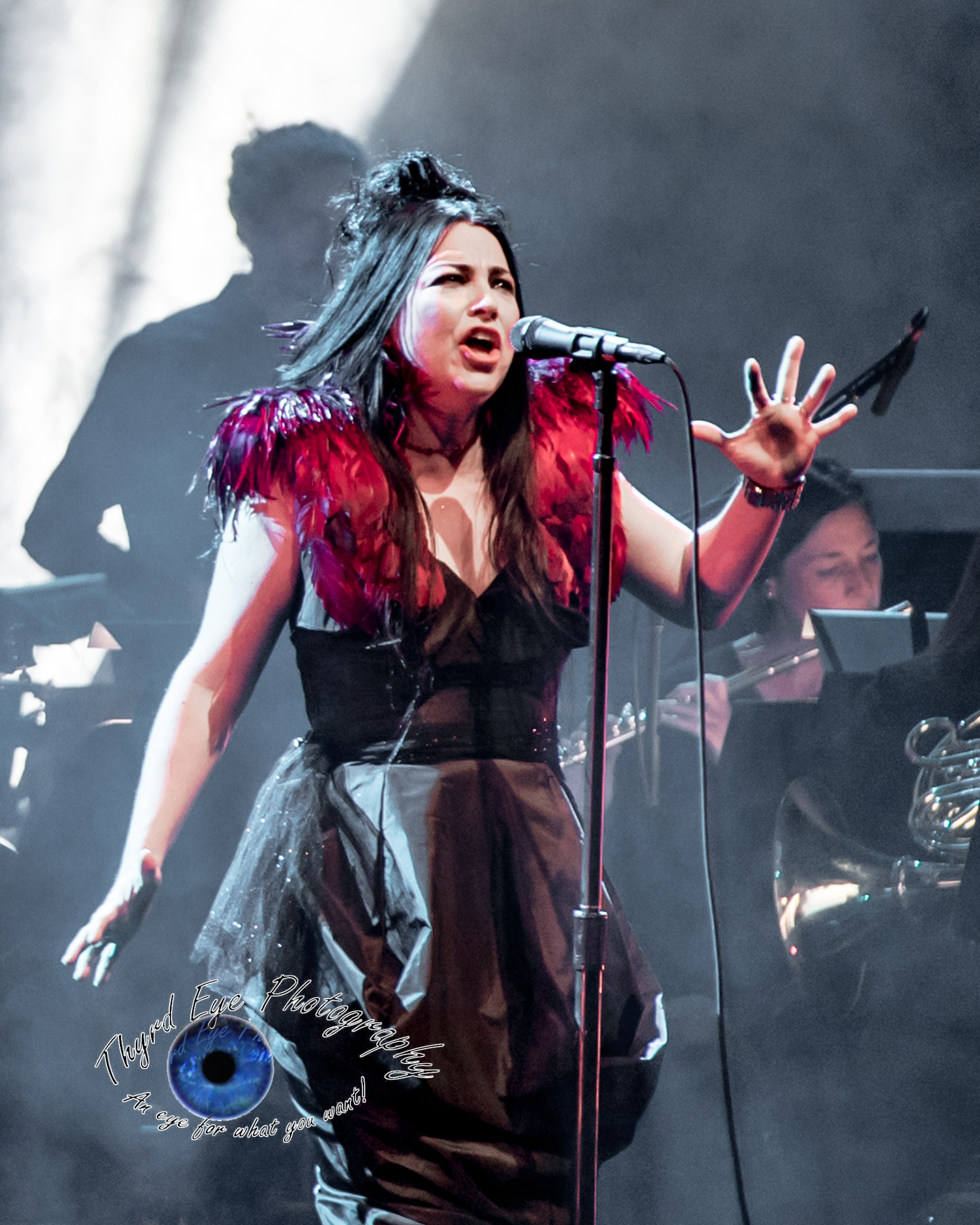 Evanescence performing Sunday at Peabody Opera House in Saint Louis by Sean Derrick Thyrd Eye graphy