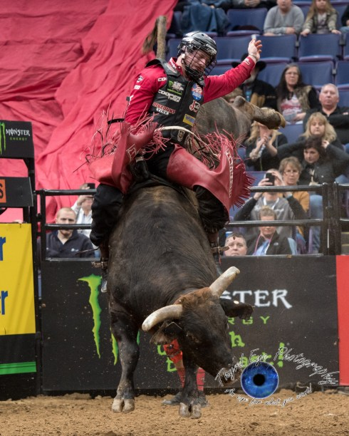 Brennon Eldred competing in the PBR Saint Louis Invitational. Photo by Sean Derrick/Thyrd Eye Photography.