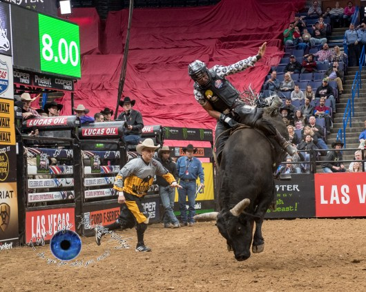 Keyshawn Whitehorse competing in the PBR Saint Louis Invitational. Photo by Sean Derrick/Thyrd Eye Photography.