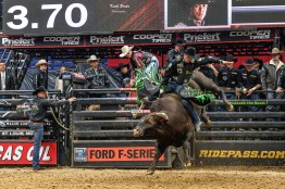 PBR Mason Lowe Memorial at Enterprise Center in Saint Louis, Photo by Keith Brake.