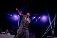 Biz Markie in concert at the Hollywood Casino Amphitheatre in Saint Louis Friday. Photo by Sean Derrick/Thyrd Eye Photography