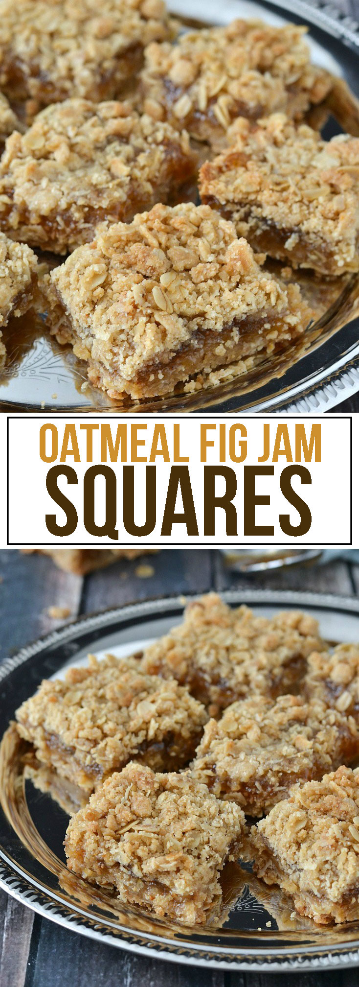 Oatmeal Fig Jam Squares