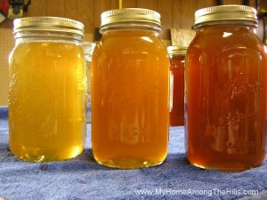 Three types of honey