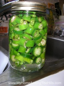 Canned, pickled jalapenos