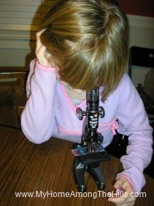 Microscope work
