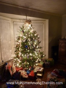 The 2011 Christmas tree