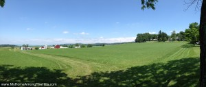The view from the barn