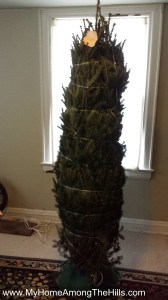 Our Christmas tree...still wrapped up!