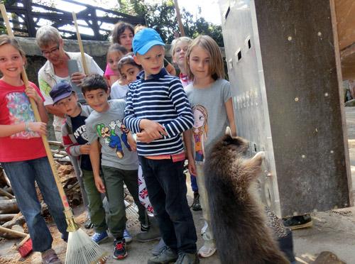 NZ Zoo Intensiv