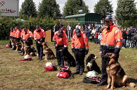 wpid-468Einzigartige-Hundestaffel-der-FFW-Buchen-2011-06-21-21-45.jpg