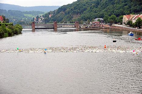 wpid-468Heidelbergman-Neckar-2011-08-1-21-45.jpg