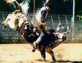 rodeo pix