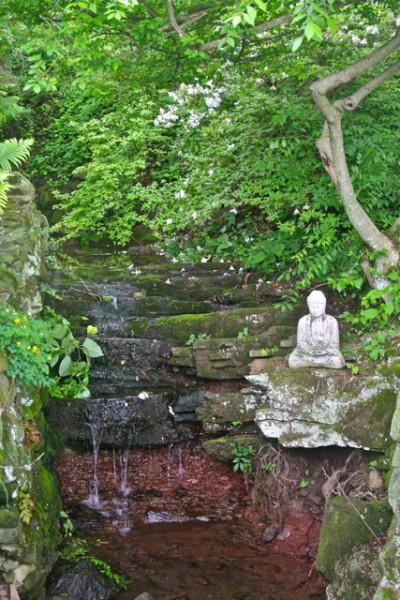 NSL143_Civic Garden_waterfall