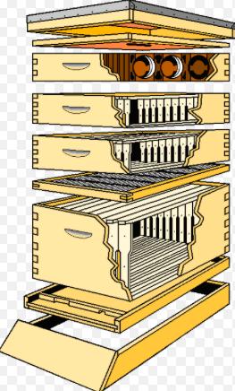 NSL_151_Langstroth Hive