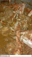 Tasty Parsi Crab Curry