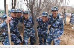 Chinese-soldiers-plant-trees