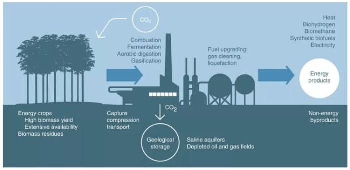 negative carbon power plant ccs