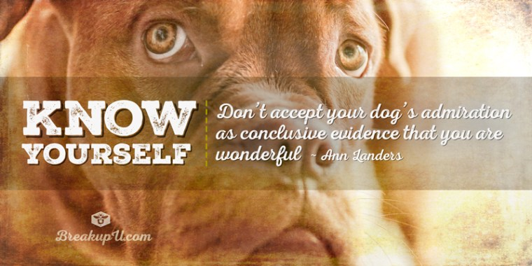 Know yourself. Don't accept your dog's admiration as conclusive evidence that you are wonderful