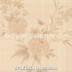 SPLEDID, DY220204