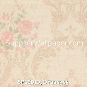 SPLEDID, DY220305