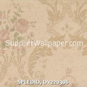 SPLEDID, DY220306