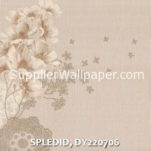 SPLEDID, DY220706