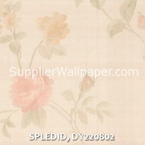 SPLEDID, DY220802
