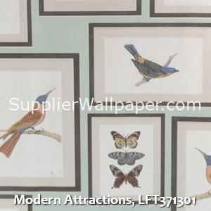 Modern Attractions, LFT371301
