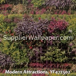 Modern Attractions, YF472502