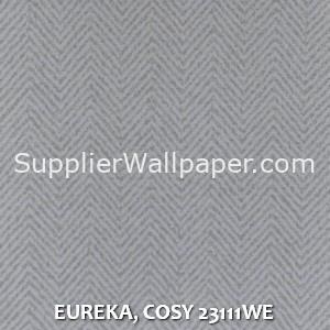 EUREKA, COSY 23111WE