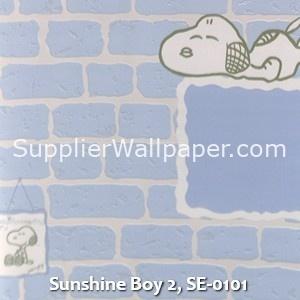 Sunshine Boy 2, SE-0101