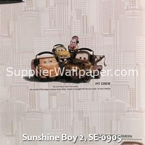 Sunshine Boy 2, SE-0905