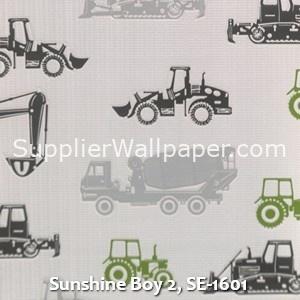 Sunshine Boy 2, SE-1601