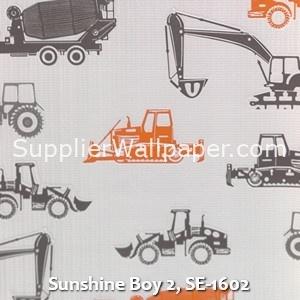 Sunshine Boy 2, SE-1602