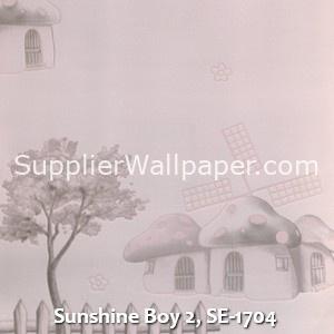 Sunshine Boy 2, SE-1704