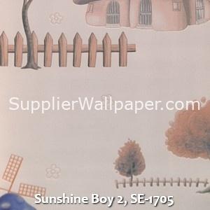 Sunshine Boy 2, SE-1705
