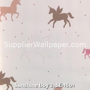 Sunshine Boy 2, SE-1801